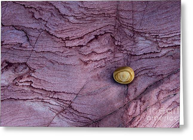 Stratum Greeting Cards - Eroded Sandstone rock pattern Greeting Card by Tim Gainey