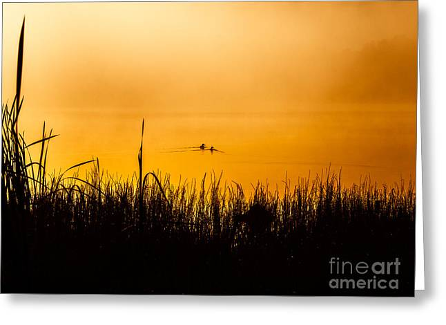 Foggy Beach Greeting Cards - Escape to the Mist Greeting Card by Ismo Raisanen