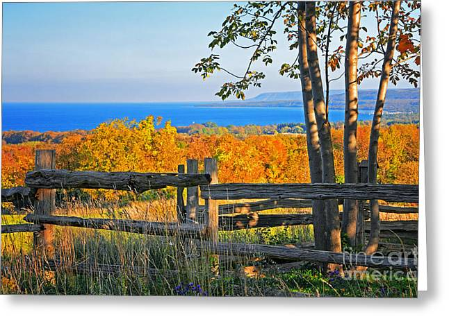 Collingwood Greeting Cards - Escarpment Fall Colors Greeting Card by Charline Xia