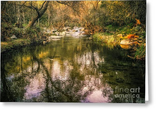 Escondido Creek In Evening Light Greeting Card by Alexander Kunz