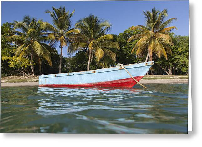 Puerto Rico Greeting Cards - Esperanza Skiff Greeting Card by Patrick Downey