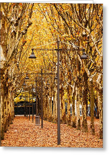 Esplanade Des Quinconces Park Greeting Card by Panoramic Images