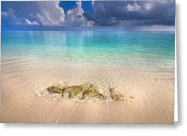 Maldivian Greeting Cards - Essence of Water Greeting Card by Jenny Rainbow