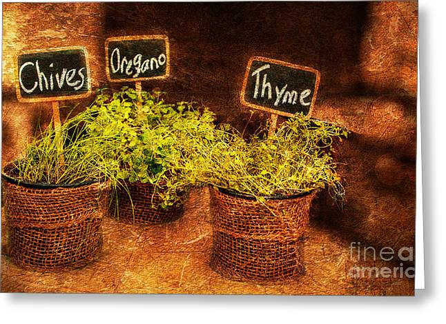 Decor Photography Pyrography Greeting Cards - Essential Herbs Greeting Card by Patricia Awapara