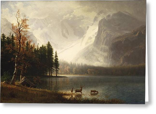 Estes Park Colorado Whytes Lake Greeting Cards - Estes Park Colorado Whytes Lake Greeting Card by Albert Bierstadt