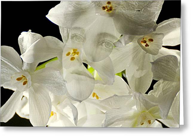 Edwardian Digital Greeting Cards - Ethel Narcissus Greeting Card by Judy Wood