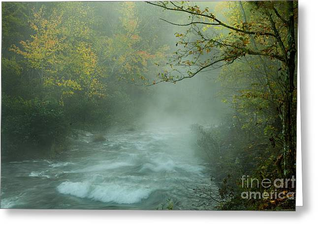 Beavers Bend Park Greeting Cards - Ethereal Morning  Greeting Card by Iris Greenwell