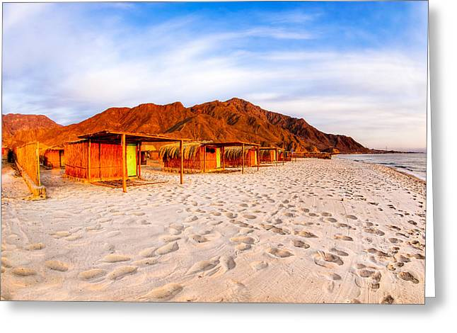 Sinai Mountain Greeting Cards - Ethereal Morning on a Red Sea Beach Greeting Card by Mark Tisdale