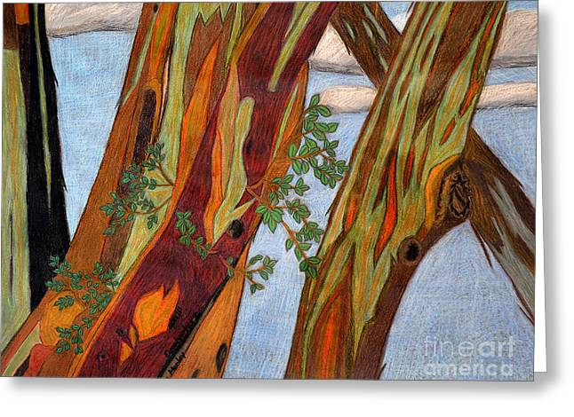 Eucalyptus 2 Greeting Card by  Cora Eklund