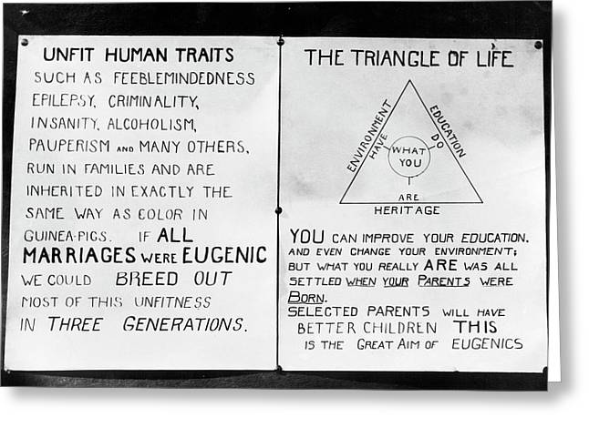 Eugenics Posters At Public Fair Greeting Card by American Philosophical Society