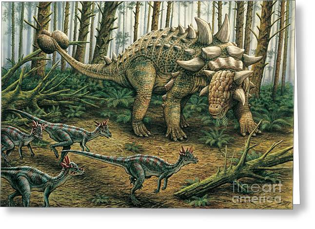 Phil Wilson Greeting Cards - Euoplocephalus with Stygimoloch in foreground Greeting Card by Phil Wilson