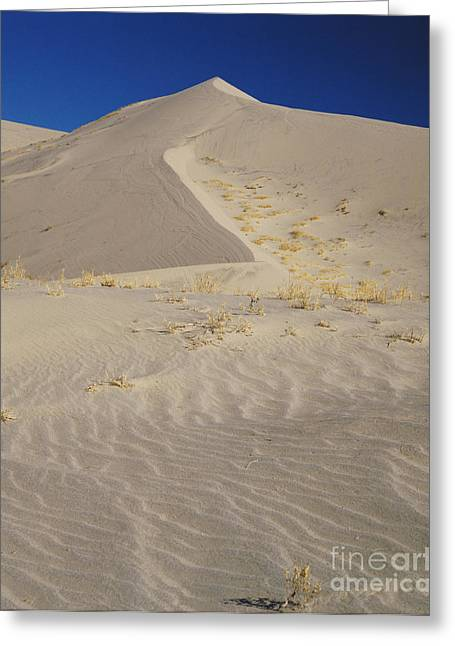 Eureka Valley Greeting Cards - Eureka Dunes, California Greeting Card by Tracy Knauer