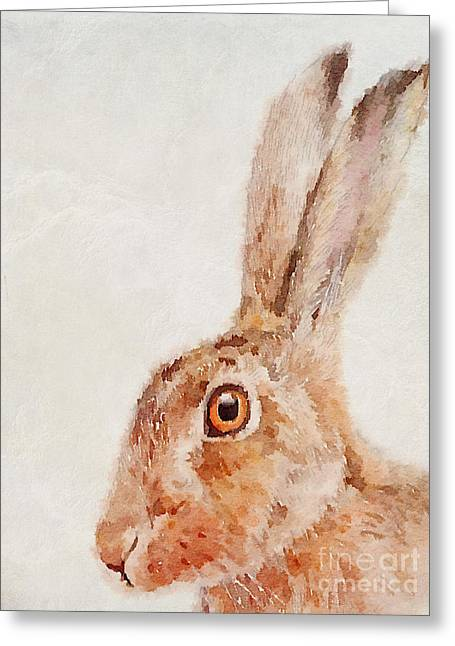 Hare Greeting Cards - European Hare Watercolor Greeting Card by John Edwards