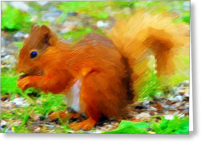 Fox Squirrel Paintings Greeting Cards - European Red Squirrel Greeting Card by Lanjee Chee