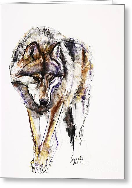 Breeds Pastels Greeting Cards - European Wolf Greeting Card by Mark Adlington