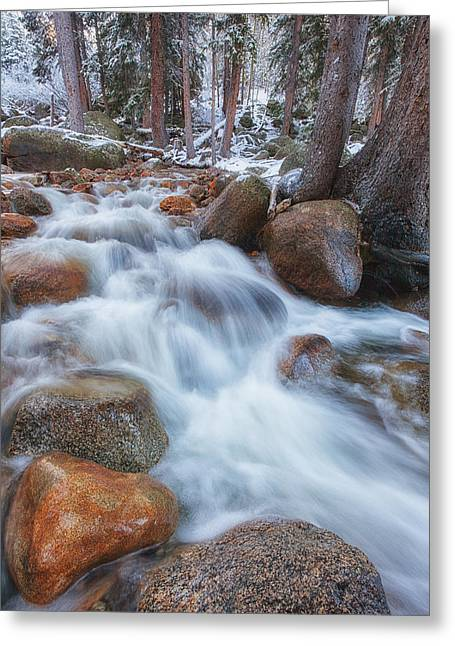 Scenic River Photography Greeting Cards - Evans Creek Greeting Card by Darren  White