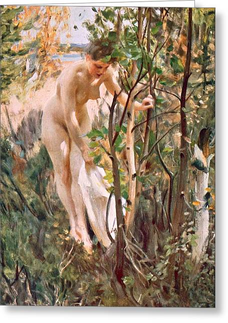 Full Body Drawings Greeting Cards - Eve Greeting Card by Anders Leonard Zorn
