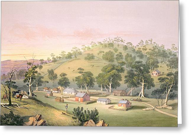Farmer Drawings Greeting Cards - Evening At Angaston, South Australia Greeting Card by George French Angas