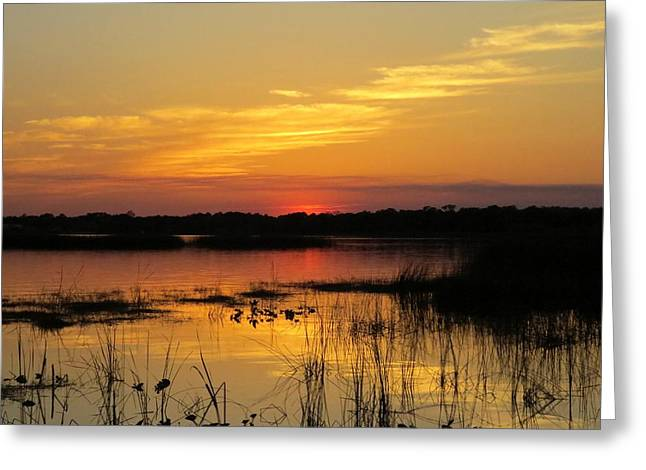 Lake Walden Greeting Cards - Evening at the lake Greeting Card by Zina Stromberg