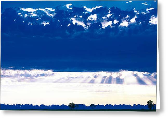 Puffy Clouds Greeting Cards - Evening Clouds Sacramento Ca Usa Greeting Card by Panoramic Images