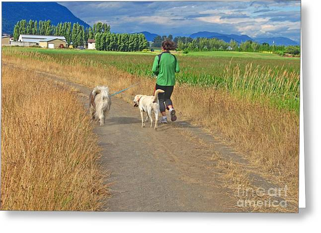 Dog Walking Greeting Cards - Evening Exercise Greeting Card by Ann Horn