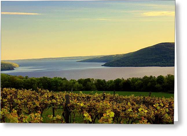 Canandaigua Greeting Cards - Evening Falls Greeting Card by Glenn Curtis