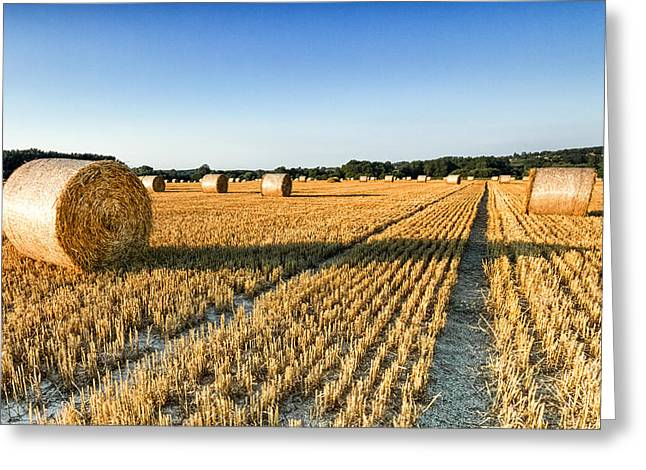 Hay Bale Greeting Cards - Evening Glory Greeting Card by Ian Hufton