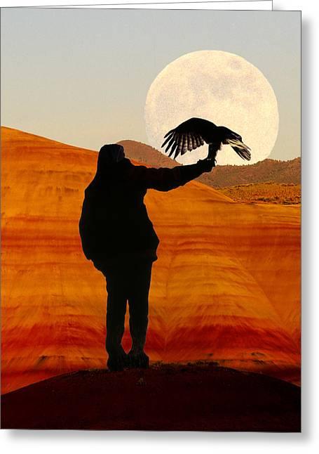 Hunting Bird Greeting Cards - Evening Hunter II Greeting Card by Buddy Mays