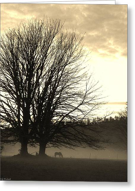 Silhouettes Of Horses Greeting Cards - Evening in the pasture Greeting Card by Becky Woodworth