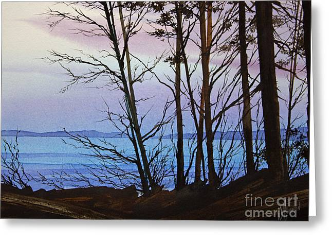Landscape Framed Prints Greeting Cards - Evening Light Greeting Card by James Williamson