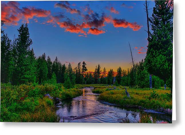 Lucky Dogs Greeting Cards - Evening On Lucky Dog Creek Greeting Card by Greg Norrell