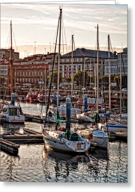 Sailboats Docked Digital Art Greeting Cards - Evening on the Harbor  Greeting Card by Mary Machare