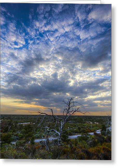 Dickenson Greeting Cards - Evening Skies over Florida Greeting Card by Debra and Dave Vanderlaan