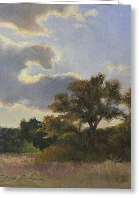 Dallas Paintings Greeting Cards - Evening Summer Clouds Greeting Card by Anna Bain