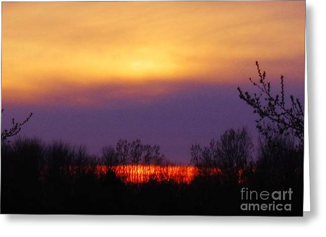 Evening Sunset Lake Greeting Card by Judy Via-Wolff