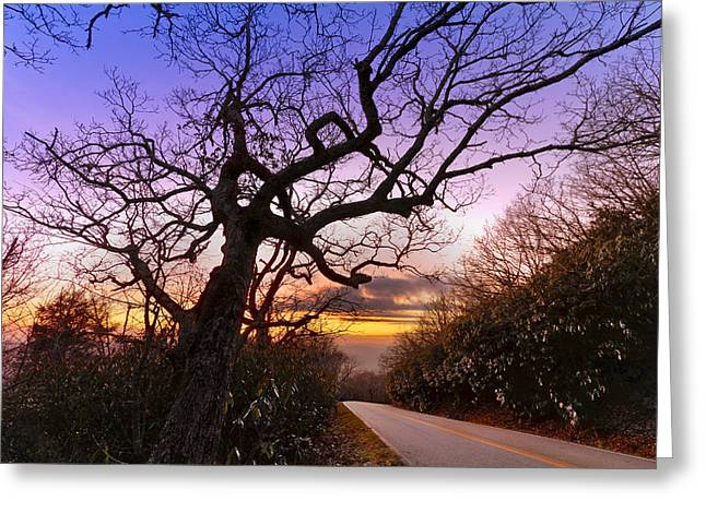 Mountaintop. Trees Greeting Cards - Evening Tree Greeting Card by Debra and Dave Vanderlaan