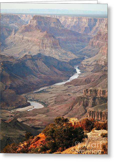 Beauty In Nature Greeting Cards - Evening Twilight Reflected from Colorado River Meandering through Grand Canyon National Park Greeting Card by Shawn O