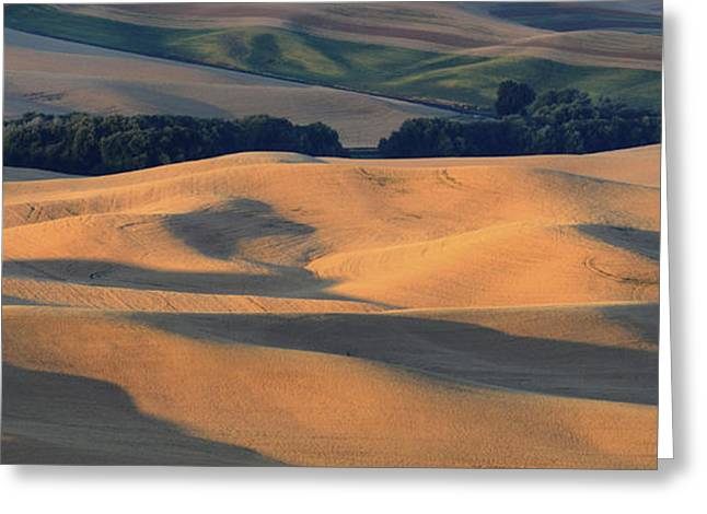 Contour Farming Greeting Cards - Evenings Glow Greeting Card by Latah Trail Foundation