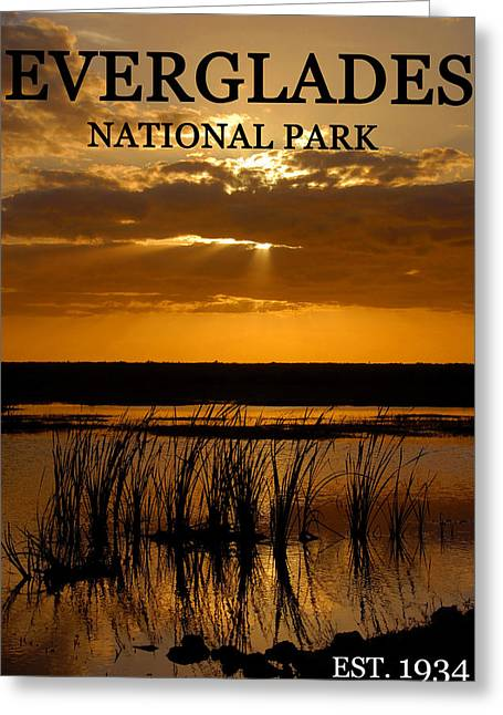 Established Greeting Cards - Everglades 1934 Greeting Card by David Lee Thompson