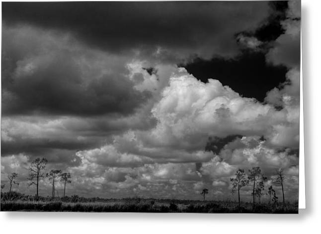 Summer Storm Greeting Cards - Everglades clouds 6873 BW Greeting Card by Rudy Umans