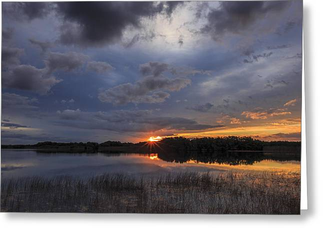 Florida Pond Greeting Cards - Everglades Dawn Greeting Card by Mike Lang