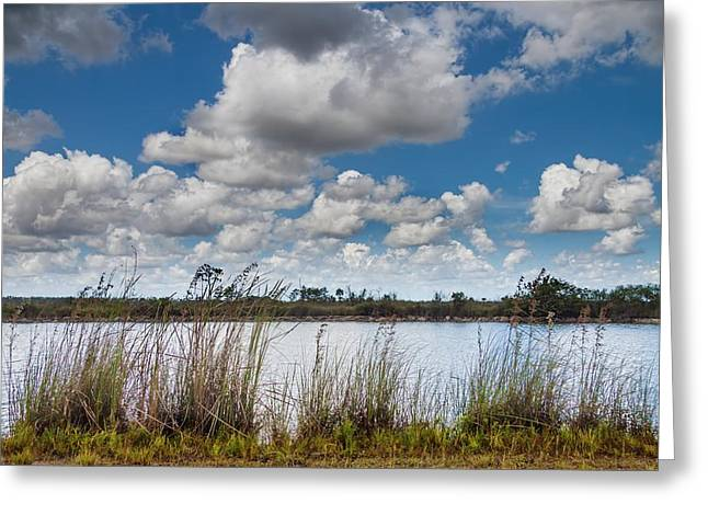 Mangrove Forest Greeting Cards - Everglades Lake 6853 Greeting Card by Rudy Umans
