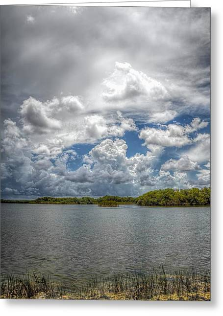 Mangrove Forest Greeting Cards - Everglades lake 6919 Greeting Card by Rudy Umans