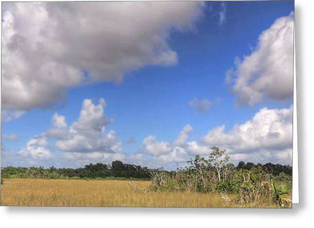Mystical Landscape Greeting Cards - Everglades Landscape Panorama Greeting Card by Rudy Umans