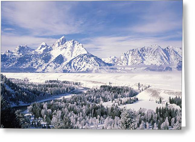 Evergreen Trees On A Snow Covered Greeting Card by Panoramic Images