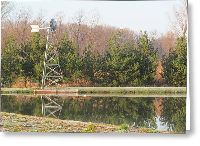 Windvane Greeting Cards - Evergreens and Windvane Greeting Card by Tina M Wenger