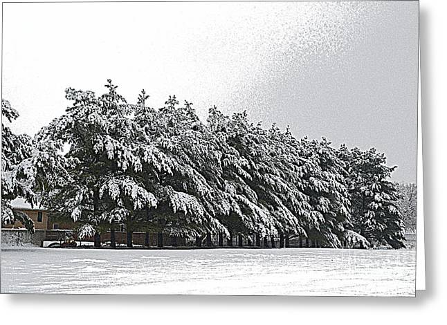 Snowy Day Greeting Cards - Evergreens in Snow Greeting Card by Luther   Fine Art