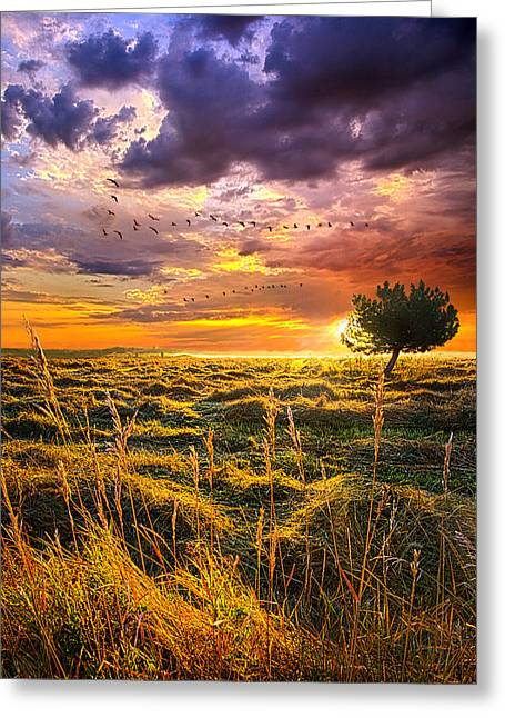 Hike Greeting Cards - Every Story Has A Beginning Greeting Card by Phil Koch