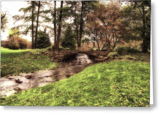 Fall Photos Mixed Media Greeting Cards - Every Tear Drop Is A Waterfall Greeting Card by Thomas Woolworth