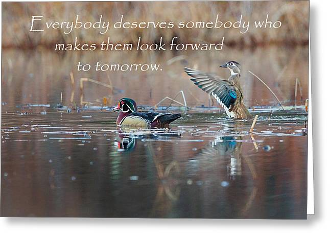 With Love Greeting Cards - Everybody Deserves Somebody Greeting Card by Bill  Wakeley